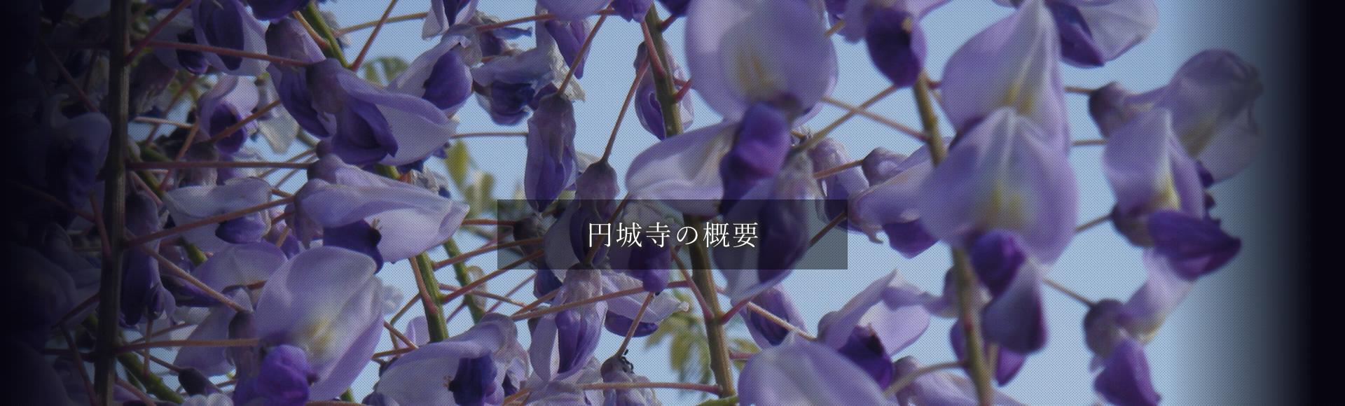 円城寺の概要